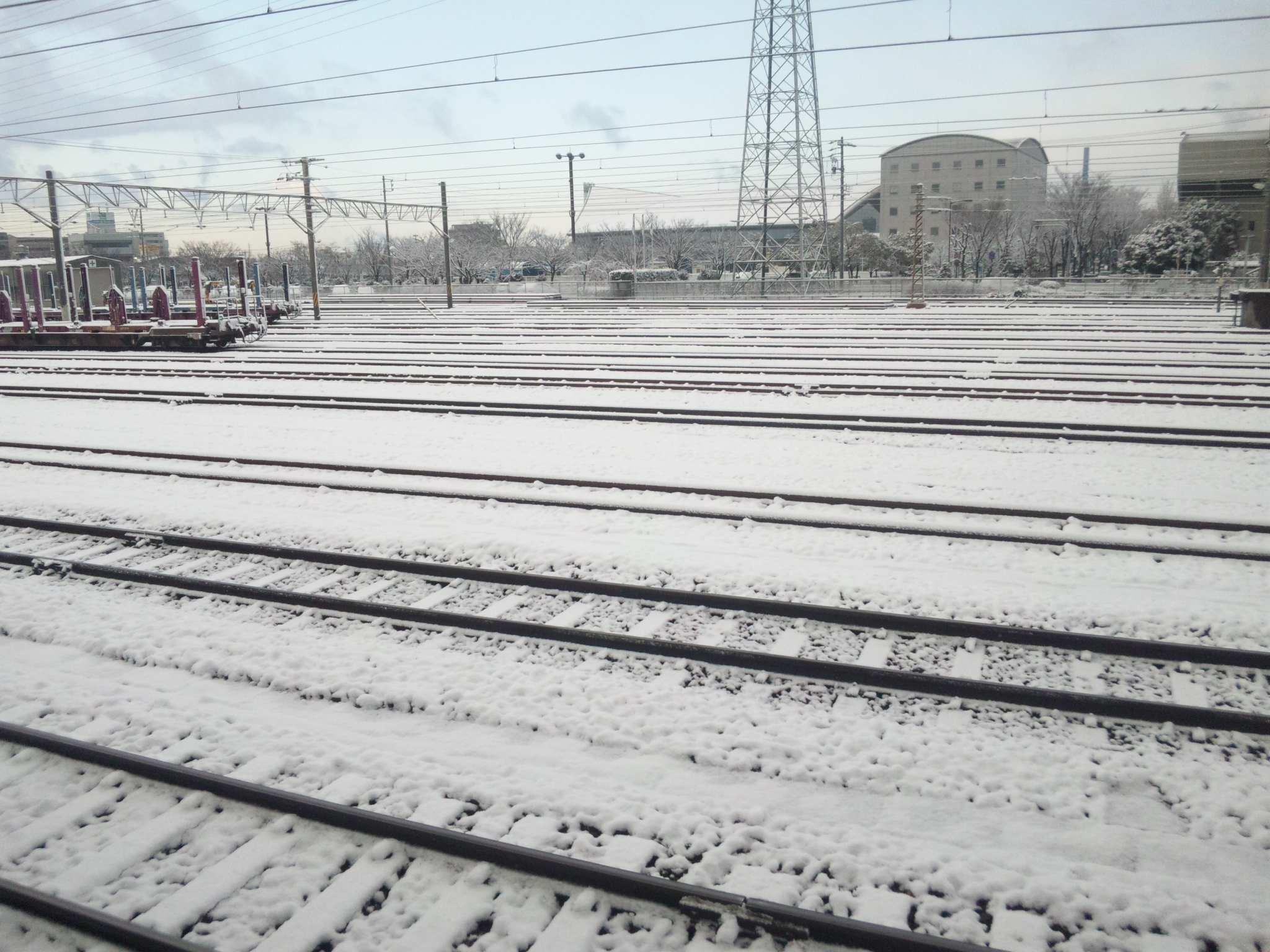 久しぶりの積雪です